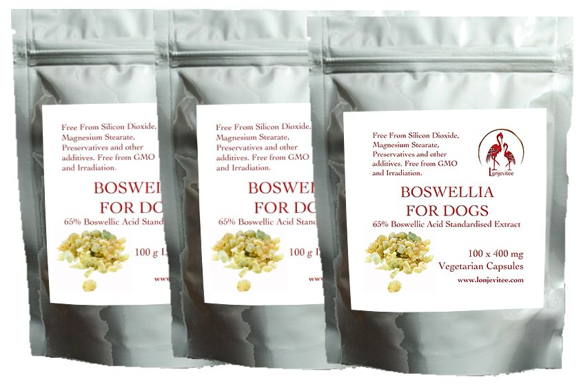 Boswellia for Dogs 300 x 400 mg vegetarian capsules - Three Pouch Saver Pack